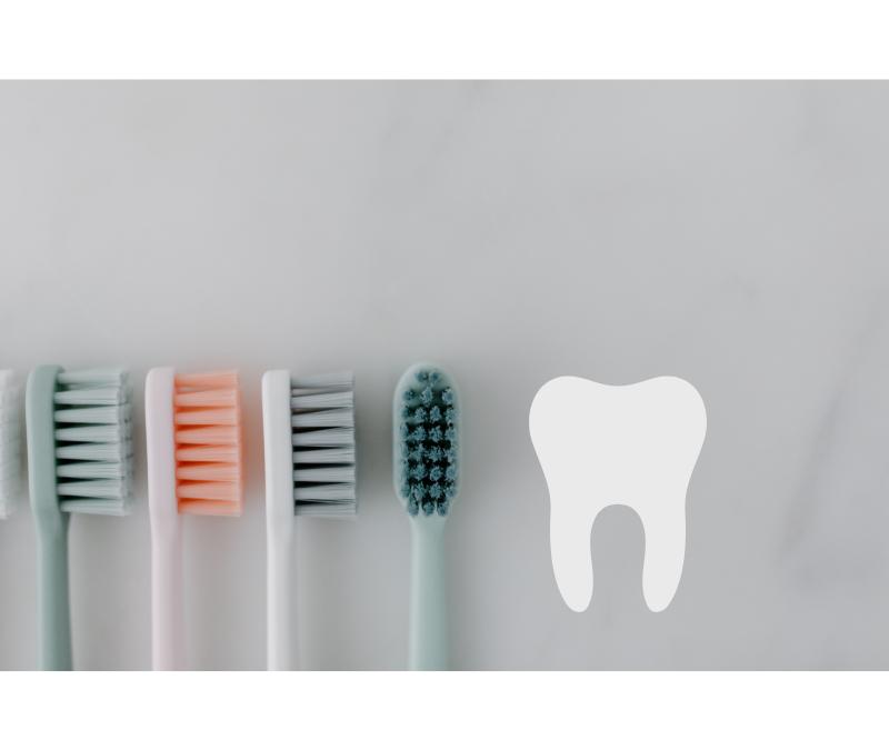 Alteração da Operadora do Plano Odontológico